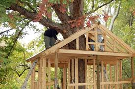 kids tree house for sale. Treehouse Homes For Sale Clubhouse Kits Cool Tree Pictures Of Houses Kids Playhouses History House Cartoon Show North Carolina