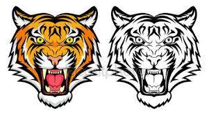 Tetování Tygr Stock Vektory Royalty Free Tetování Tygr Ilustrace