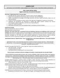 Higher Education Resume Samples Cfo Examples