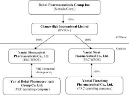 Organizational Chart Of A Drugstore Bohai Pharmaceuticals Group Inc Form 10 K September 28