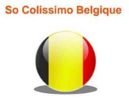 """Résultat de recherche d'images pour """"colissimo belgique et luxembourg"""""""
