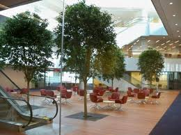 Interior landscaping office Landscaped Living Interiorscapes Interior Landscaping Services Office Signs Interiorscapes Transform Your Connecticut Or New York Business
