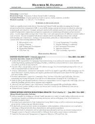 Cover Letter Government Government Job Resume Stunning Resume Format