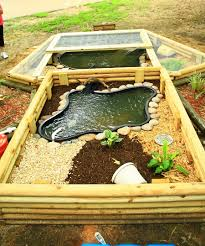 outdoor turtle pond designs. picture outdoor turtle pond designs a