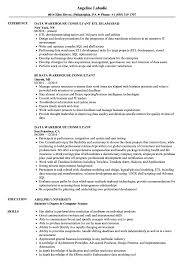 Data Warehouse Resume Examples Data Warehouse Consultant Resume Samples Velvet Jobs 13