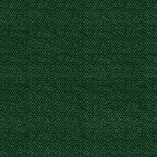 Shop Carpet at Lowes