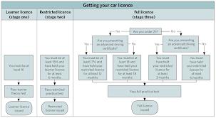 Florida Driver S License Eye Chart