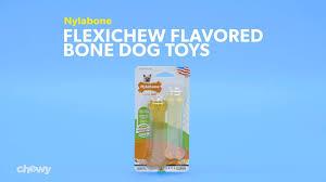Nylabone_flexichewflavoredbonedogtoys_dog_r0_v1