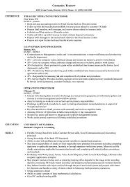 Operations Processor Resume Samples Velvet Jobs