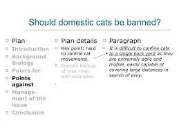 how to write a human awareness essay  14 should domestic cats