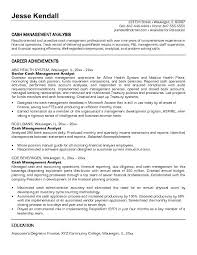 Example Cash Management Analyst Resume Free Sample.
