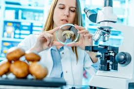 Definición de Artículo Científico » Concepto en Definición ABC