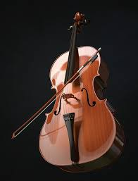 Image result for cello with bow