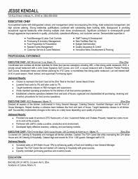 presentation survey examples guest relations executive resume examples chef sample unique