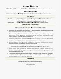 Resume Executive Level Functional Template Word Director Free Cv Uk