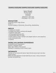 Shidduch Resume Template Example Resume Format For Accountant Pdf