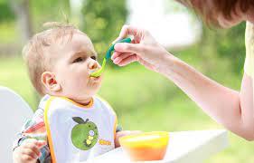 Cho Bé Ăn Dặm Có Cần Nêm Nếm Gia Vị Không? - Trẻ Biếng Ăn