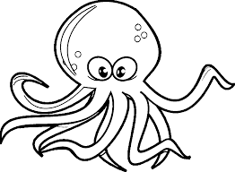 Small Picture Octopus coloring pages printable ColoringStar