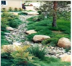Small Picture Best 25 Rain garden ideas on Pinterest Driveway landscaping