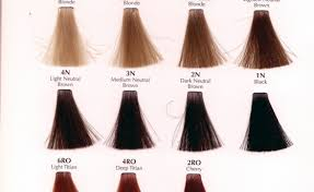 Hair Color Redken Shades Swatches Beauty Within Clinic