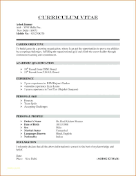 Resume Simple Format Extraordinary Basic Resume Examples For High School Students Example Of Simple