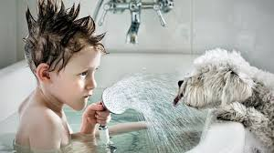 Cute Kids and Dog Play in Bathtub - Kid and Dog Collection 2017 ...