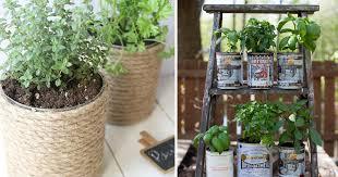 growing herbs in tin cans 14 diy tin can herb garden ideas