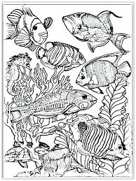 Small Fish Template Small Fish Coloring Pages Small Fish Coloring Pages Fish Bowl