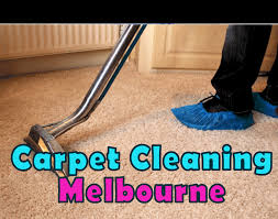 Image result for Professional Carpet Cleaning