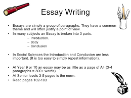 social science skills for years  essay