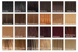 Buy Human Hair Color Chart From Arrow Exim India Id 336806