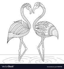 flamingo coloring pictures. Beautiful Pictures Flamingo Coloring Vector Image In Coloring Pictures R