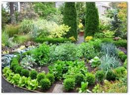 Small Picture Best 25 Garden design software ideas on Pinterest Free garden