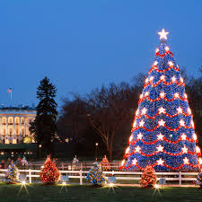 Dc White House Christmas Tree Lighting December 2018 Festivals And Events In Washington Dc