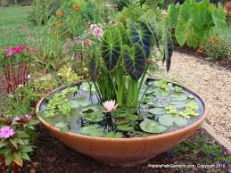 Small Picture The 25 best Small water gardens ideas on Pinterest Small water