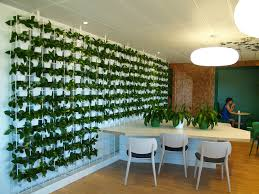 Small Picture Indoor Plant Hire Sydney Office Plants Sydney Green Design