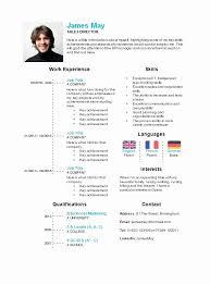 Curriculum Word Curriculum Vitae 2016 Word Resume Timeline Template Free Timeline