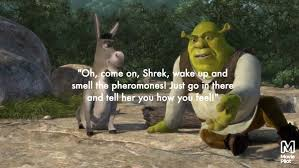 best quotes by shrek s donkey com 13 give your friends the wakeup call they need