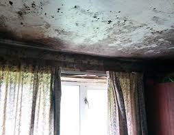 Mould Spreading Across Bedroom Ceiling. How To Get Rid Of Mould Problems  Envirovent