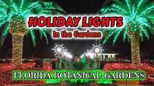 Botanical Gardens Christmas Lights 2018 2018 Holiday Lights In The Gardens At Florida Botanical Gardens