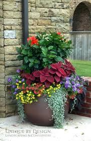 big lots flower pots large outdoor flower pots modern large flower pots for outdoors big lots