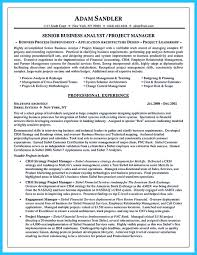 Business Analyst Project Manager Resume Sample Business Analyst Project Manager Resume Sample Professional Business 16