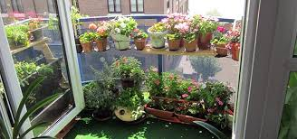 balcony gardens. balcony gardens n