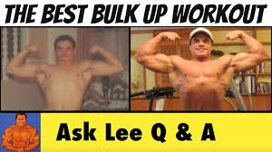 the best bulk up workout program i ve ever used
