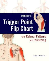 Free Trigger Point Chart Mosbys Trigger Point Flip Chart With Referral Patterns And
