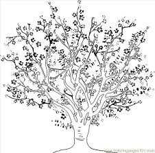 Small Picture 27 best Tree illustrations images on Pinterest Drawings Leaf