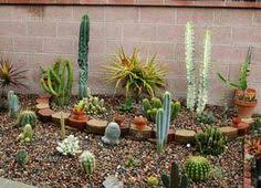 Small Picture The Garden Conservancy Pasadena Garden Tour Cacti Gardens and