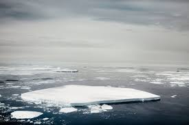 How High Will Sea Levels Rise As Antarcticas Ice Melts Time