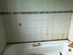 best to clean bathroom tile best work history of best to clean bathroom tile