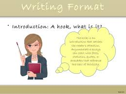 what is environment in hindi essay